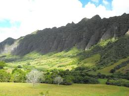 Photo of Oahu Lost Tour and Other Hawaii Movie Locations by Hummer The Valley