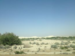 View of the desert on our drive to the Dead Sea, Cat - May 2015