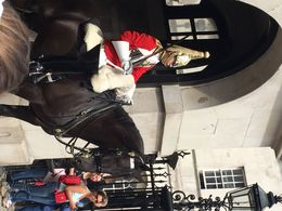 Wasn't sure the horse and rider were even alive for a minute ! They were so still ! , Bronwyn T - September 2015