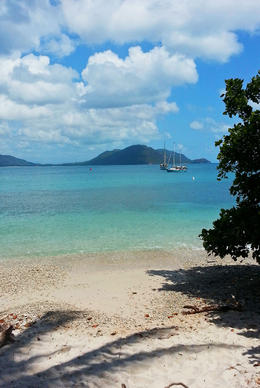 Photo of Cairns & the Tropical North Fitzroy Island Day Trip from Cairns Perfect