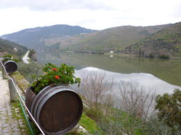 Photo of Porto & Northern Portugal Day Trip to Douro Quinto do Tedo Winery