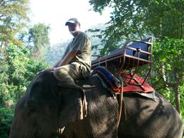 Photo of Bangkok Khao Yai National Park and Elephant Ride Day Trip from Bangkok RoundTheWorld 614