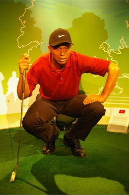 Photo of   Tiger Woods!