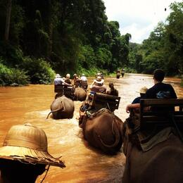 Photo of Chiang Mai Chiang Dao Elephant Jungle Trek and Ping River Rafting Tour from Chiang Mai View from atop our Elephant