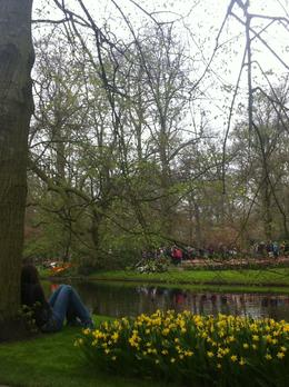 Photo of Amsterdam Keukenhof Gardens and Tulip Fields Tour from Amsterdam Keukenhof Gardens, The Netherlands