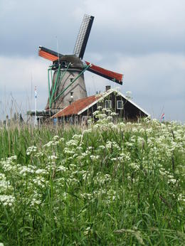 Photo of Amsterdam Zaanse Schans Windmills, Marken and Volendam Half-Day Trip from Amsterdam Windmill with nature