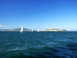 A beautiful scene as sailboats surround Alcatraz Island, enjoying the weather as we were. , Stephen L - September 2015
