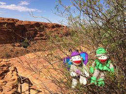 We saw 2 and some other lizards. mixed up my captions with the monkeys. , Mallie H - December 2015