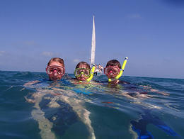 Photo of Key West Shipwreck Snorkel and Wild Dolphin Encounter Shipwreck Snorkel and Wild Dolphin Encounter