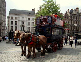 Photo of Amsterdam Brussels Day Trip from Amsterdam STUBBY HORSES :D