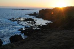 Photo of Melbourne Phillip Island: Penguins, Koalas and Kangaroos Day Tour from Melbourne Sunset at the Nobbies