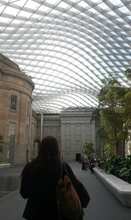 The very cool ceiling structure in the conservatory - December 2014