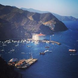 View of Catalina Island , Brian I - October 2014