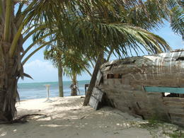 Photo of   Caye Calker.jpg (17)