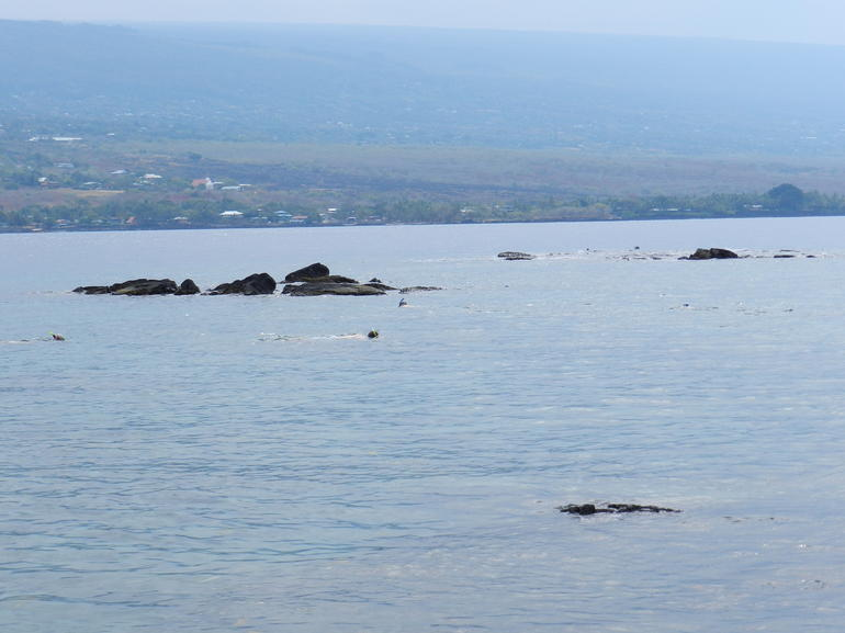 Great Snorkeling! - Big Island of Hawaii