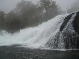 Photo of Zurich Rhine Falls Tour from Zurich Rhine Falls