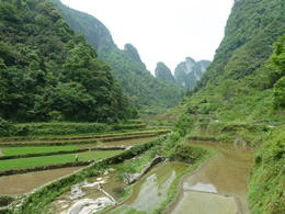 Yangshuo also had these impressive rice terrace fields - May 2012