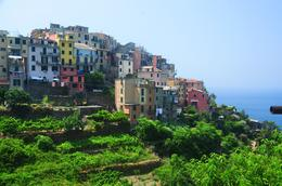 Photo of Florence Cinque Terre Hiking Day Trip from Florence One of the Five Villages