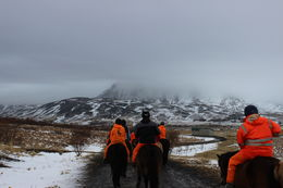 Photo of Reykjavik Viking Horse-Riding Tour and Blue Lagoon from Reykjavik Riding through the Countryside