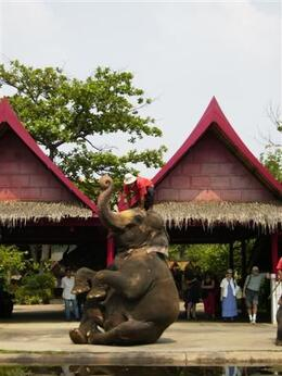 Photo of Bangkok Bangkok Rose Garden Cultural Center and Thai Village Half-Day Tour Elephant Performance