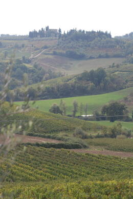 Photo of Florence Tuscany in One Day Sightseeing Tour Tuscany Countryside