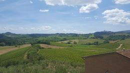 View from the farm in Tuscany where we had lunch. , Carol R - June 2016