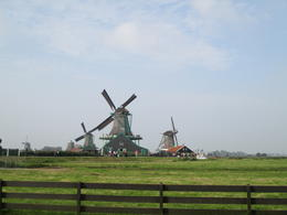 Photo of Amsterdam Dutch Windmills and Countryside Day Trip from Amsterdam Including Cheese Tasting in Edam Zaanse Schans Windmills