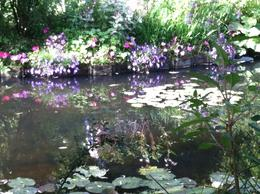 The water lilies in Monet's Japanese garden , martycowart - August 2012
