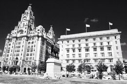 Photographed here are the Cunard building and the Royal Liver building left. , David Lally - September 2015