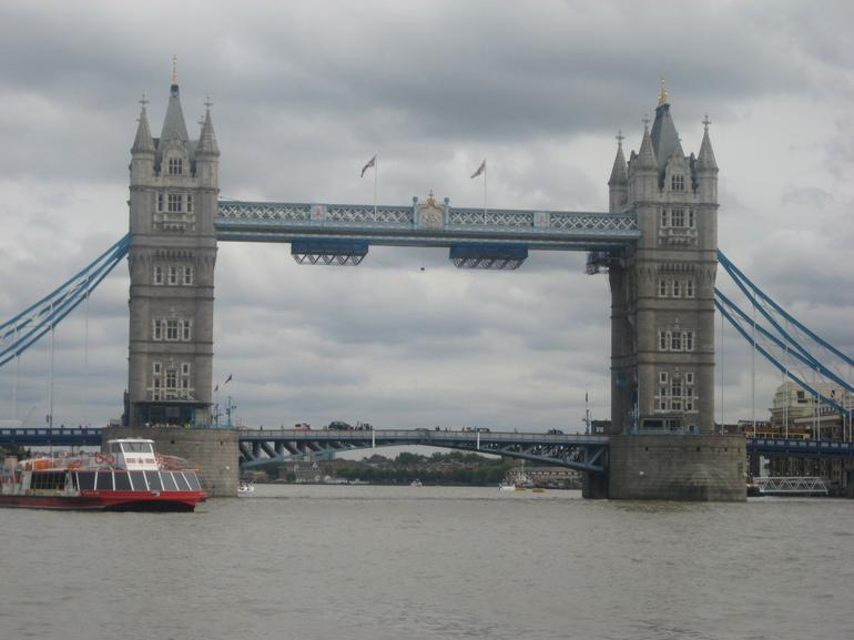 London Eye and Thames River Sightseeing Cruise - London
