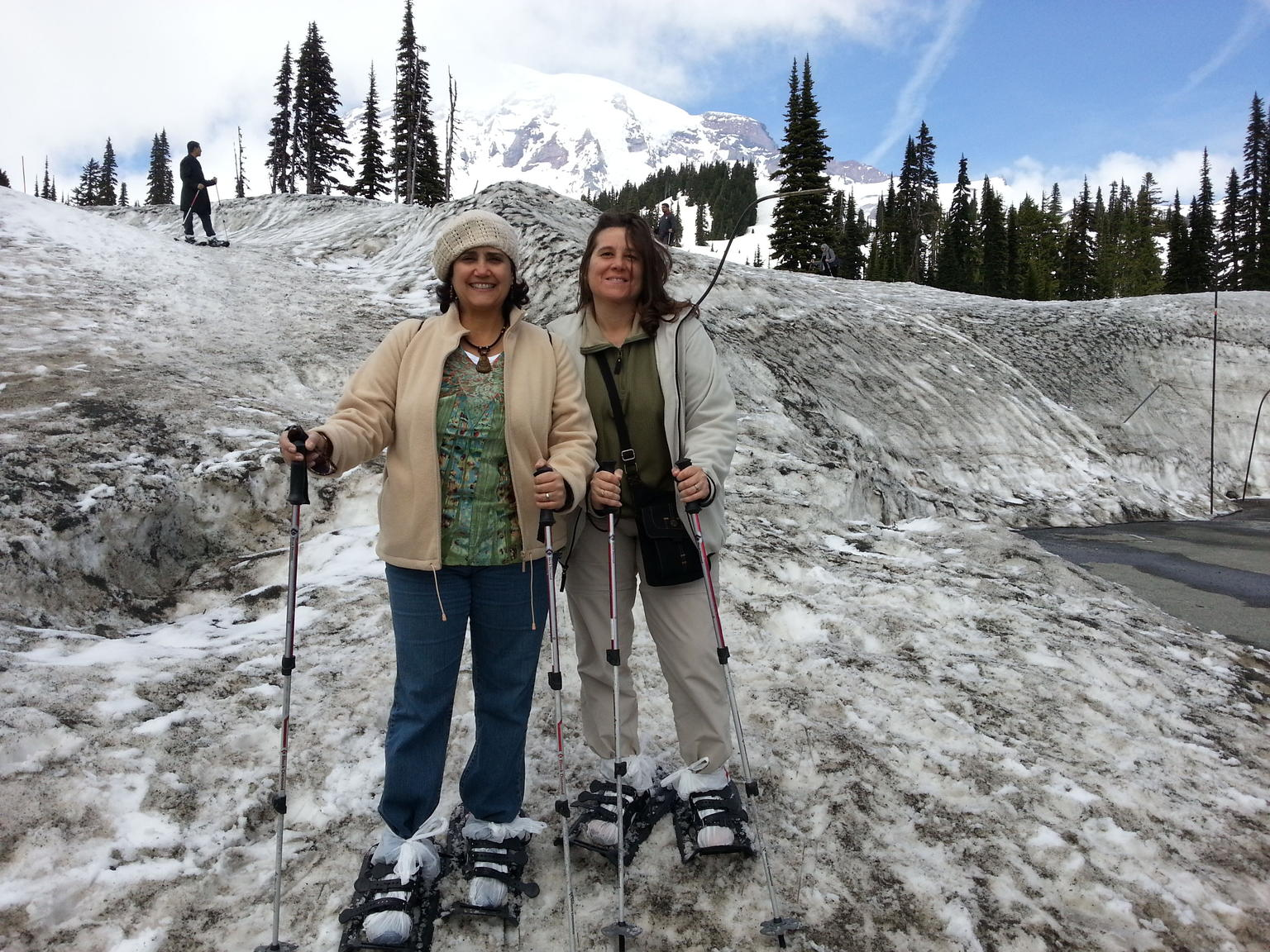 Mt. Rainier Day Tour from Seattle
