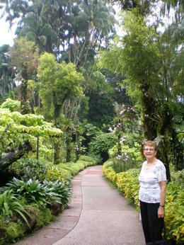 Photo of Singapore Singapore City Tour with optional Singapore Flyer Orchid Gardens