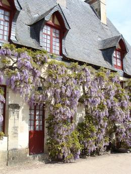 Photo of Paris Loire Valley Castles Day Trip: Chambord, Cheverny and Chenonceau Gardener's cottage with wisteria