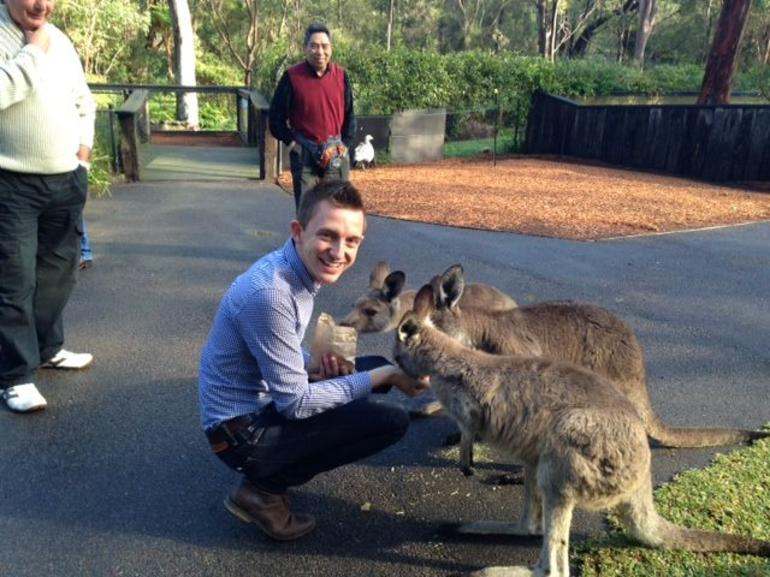 Hand-feeding kangaroos at an Australian wildlife park