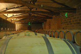 Photo of   Chateau Soutard barrel room