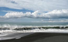 Photo of   City beach in Napier 2