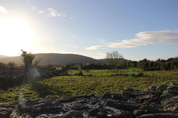Stopped at Corcomroe Abbey and the sun came out - so beautiful, peaceful, and charming in the countryside. Our guide knew lots of stories about the site and area. , Mariah P - January 2016
