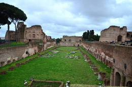 Photo of Rome Skip the Line: Ancient Rome and Colosseum Half-Day Walking Tour Emperors Private Area