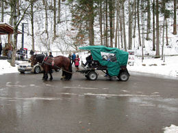 This is one of the horse carts that you can take for about 3/4 of the hike to the castle , Margaret C - December 2015