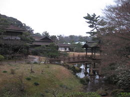 Sankeien garden , Olga N - January 2014