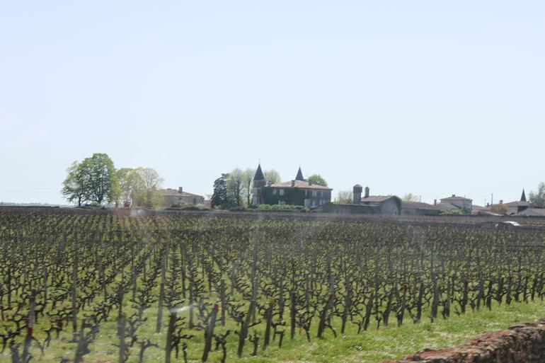 The first stop in Graves - Bordeaux