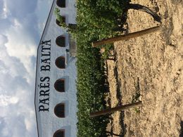 The beautiful winery that we went to , Victoria M - September 2015