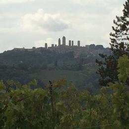 Looking at San Gimignano from lunch on the nearby farm. , Wade H - November 2014