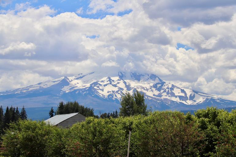Mt Hood Day Trip from Portland to Multnomah Falls and Hood River photo 4
