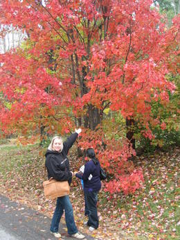 Jayne on the Fall foliage tour, New Hampshire , JAYNE S - October 2011