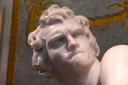 Photo of Rome Skip the Line: Borghese Gallery and Gardens Walking Tour Head of David