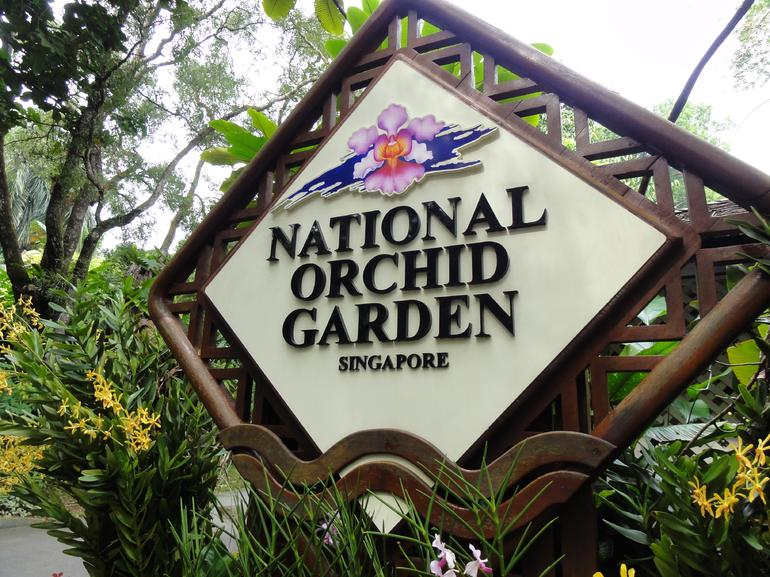National Orchid Garden - Singapore