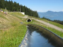 Doing the optional toboggan ride, at the Frakmuntegg cable car stop on Mount Pilatus - September 2009