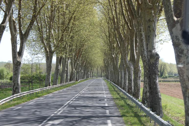 The road along the way - Bordeaux