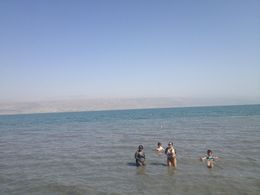 Dead Sea, Cat - May 2015